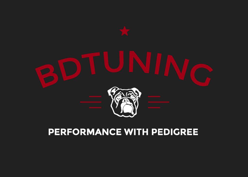 BDT Logo LSEF-001